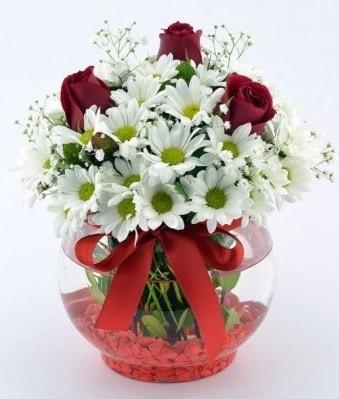 Fanusta 3 Gül ve Papatya  İsparta internetten çiçek satışı