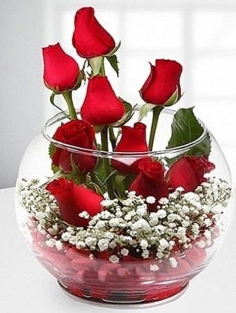 Kırmızı Mutluluk fanusta 9 kırmızı gül  İsparta çiçek siparişi sitesi