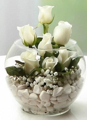 Beyaz Mutluluk 9 beyaz gül fanusta  İsparta çiçek siparişi sitesi