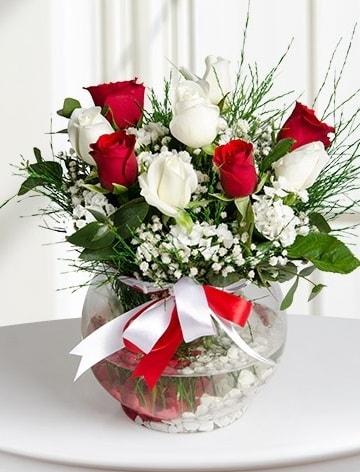 Aşk Küresi  5 beyaz 5 kırmızı gül fanusta  İsparta internetten çiçek satışı