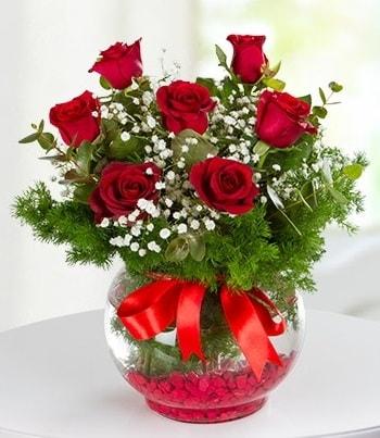 fanus Vazoda 7 Gül  İsparta çiçek , çiçekçi , çiçekçilik