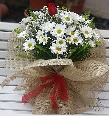 Papatya 1 adet kırmızı gül buketi  İsparta çiçekçiler