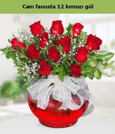 Cam içerisinde 12 adet kırmızı gül  İsparta internetten çiçek satışı