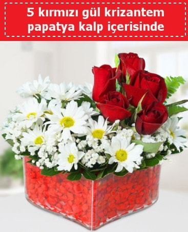 mika kalp içerisinde 5 kırmızı gül papatya  İsparta çiçek gönderme
