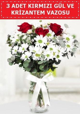 3 kırmızı gül ve camda krizantem çiçekleri  İsparta çiçek gönderme