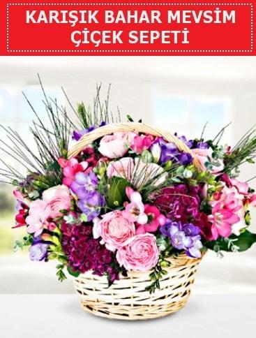 Karışık mevsim bahar çiçekleri  İsparta ucuz çiçek gönder