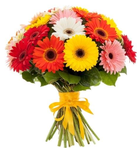 Gerbera demeti buketi  İsparta çiçek satışı