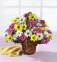 İsparta çiçekçiler  Mevsim çiçekleri sepeti